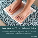 Himalayan Salt Blocks Detox Foot Blocks With