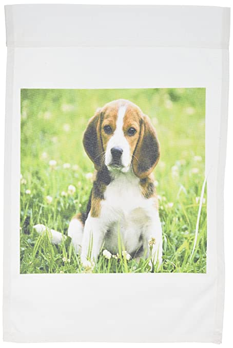 Genial 3dRose Fl_55198_1 For Love Of A Beagle Garden Flag, 12 By 18 Inch