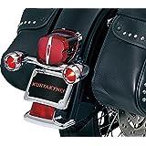 Kuryakyn 2098 Motorcycle Lighting: Rear Position Bullet Style Turn Signal/Blinker Light Bar with Red Lenses and Flat License