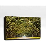 """Spanish Moss Road - Ready Made 3'x2'x2"""" Acoustic Art Panel : Includes all Mounting Hardware."""