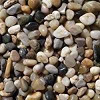 Exotic Pebbles. PMS0510 Polished Gravel, Mixed, 5 pounds, 3/8-Inch