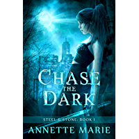 Chase the Dark (Steel & Stone Book 1) (English Edition)