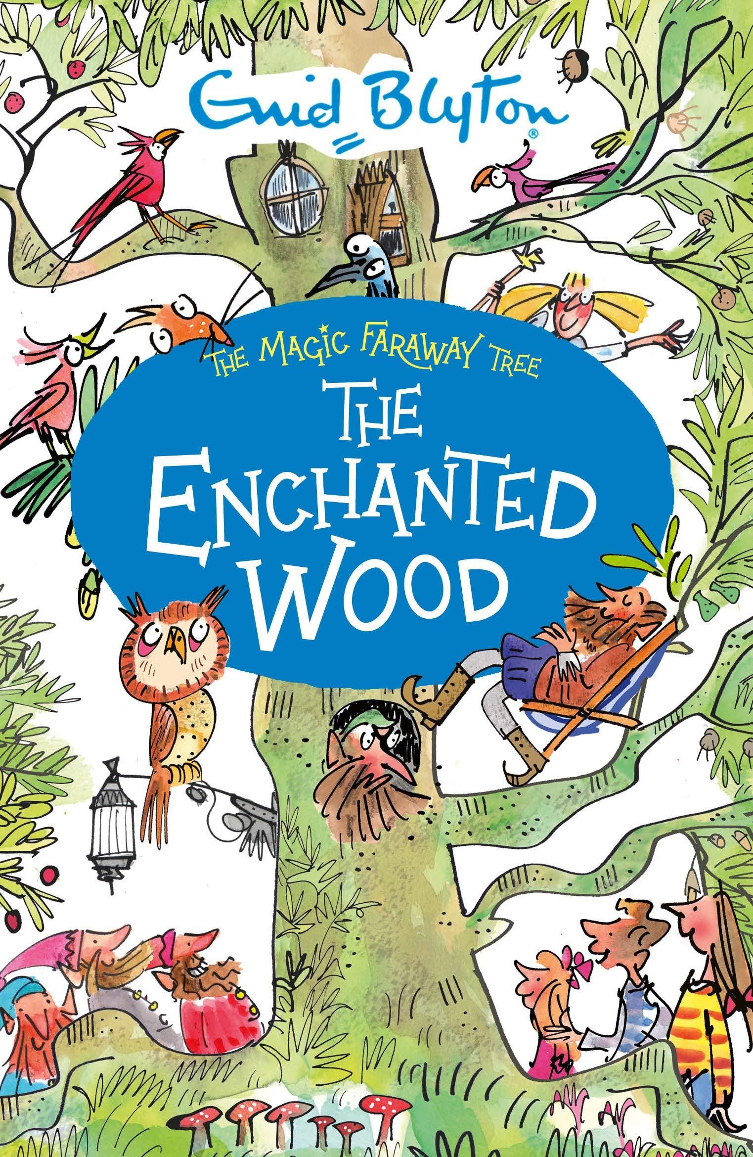 The Enchanted Wood: 1 (The Magic Faraway Tree) : Blyton, Enid:  Amazon.co.uk: Books
