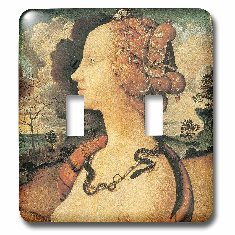 【メール便送料無料対応可】 BLN Italian Renaissance Renaissance Fineアートコレクション Cosimo – シモネッタヴェスプッチby Piero di_ Cosimo – 照明スイッチカバー – ダブルトグルスイッチ(LSP 127095_ 2 ) B00EZA5VLE, CD&DVD NEOWING:80d9898f --- svecha37.ru