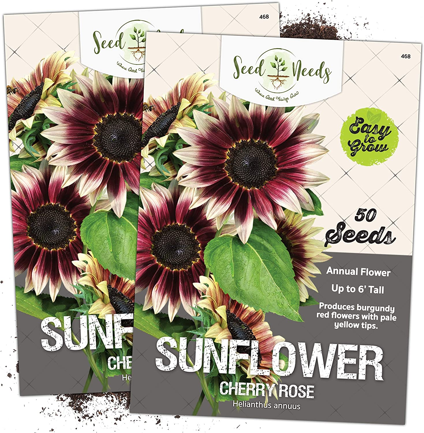 Seed Needs, Cherry Rose Sunflower (Helianthus annuus) Twin Pack of 50 Seeds Each