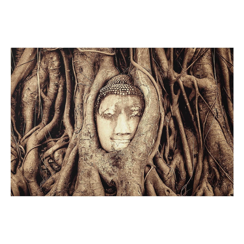 Bilderwelten Spritzschutz Glas - Buddha in Ayutthaya von Baumwurzeln gesäumt in Braun - Quer 2:3, Größe HxB: 40cm x 60cm PPS. Imaging GmbH