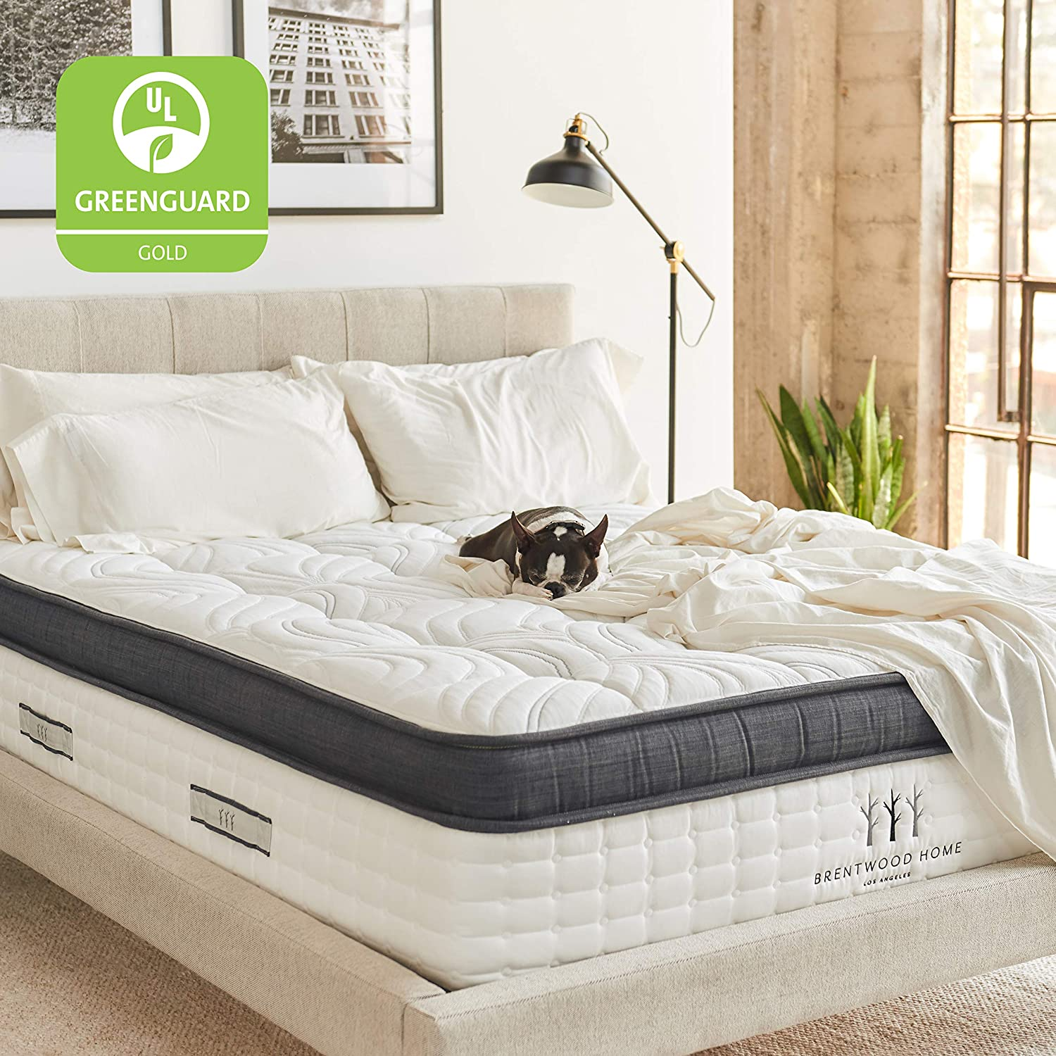 About California Queen Mattress Amazon.com: Brentwood Home Oceano Wrapped Innerspring Mattress, Made in  California, Queen: Kitchen u0026 Dining