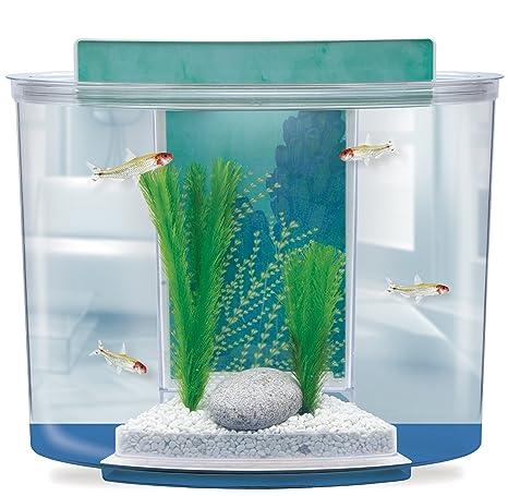 Marina Splash – Acuario 15 L
