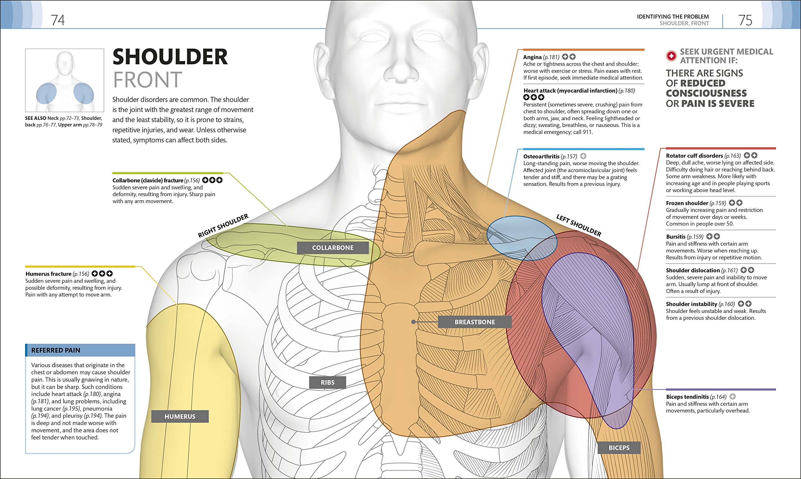 Medical Symptoms A Visual Guide The Easy Way To Identify Medical