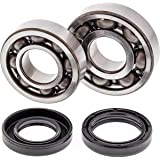 All Balls Racing 24-1043 Crank Bearing and Seal Kit