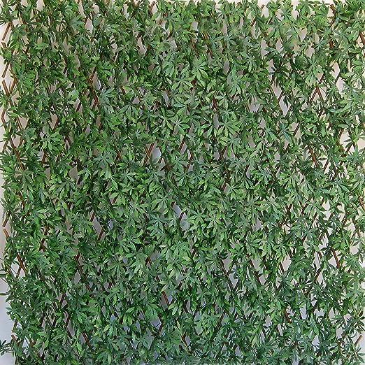 Tenax - Seto Artificial con Hojas Extensibles de Sauce, Divy 3D X-Tens Acer Palmatum, 1 x 2 m, Verde: Amazon.es: Jardín