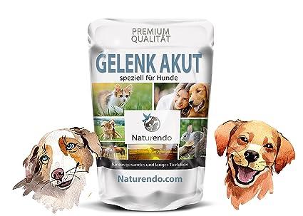 Articulación aguda especialmente para perros – con MSM + Chon droitin Glucosamina Collagen bandas tendones perro