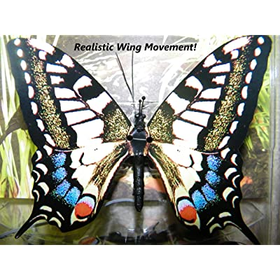 Active Aliforms Moving Butterfly - Swallowtail: Toys & Games