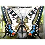 Active Aliforms Moving Butterfly Swallowtail