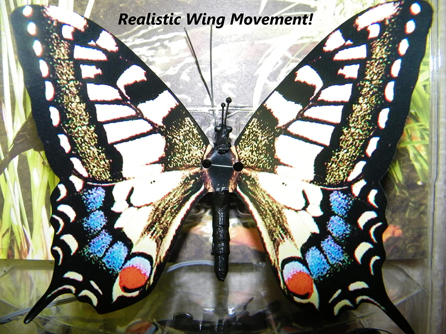 Active Aliforms Moving Butterfly - Swallowtail Dynalloy