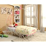Furniture of America Ashley Fairy Tale Carriage Bed, Twin, Pink & White