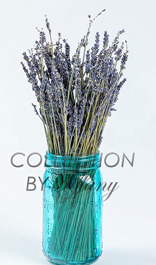 Amazon.com : Real Natural Lavender Bunch Dried Flower Decorative ...