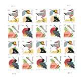 USPS 117604 Coastal Birds Postcard Stamp, Pack of 20