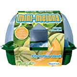 DuneCraft Mini-Melons Science Kit