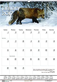 """product image for House of Doolittle 2017 Monthly Wall Calendar, Earthscapes Wildlife, 12 x 16.5"""" (HOD3732-17)"""
