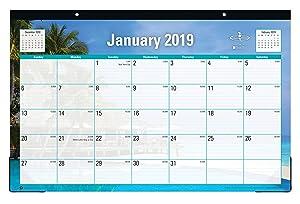 "Blue Sky 2019 Monthly Desk Pad Calendar, Ruled Blocks, 17"" x 11"", Endless Summer"