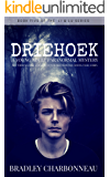 Driehoek: A young adult paranormal mystery (Li & Lu Book 5)
