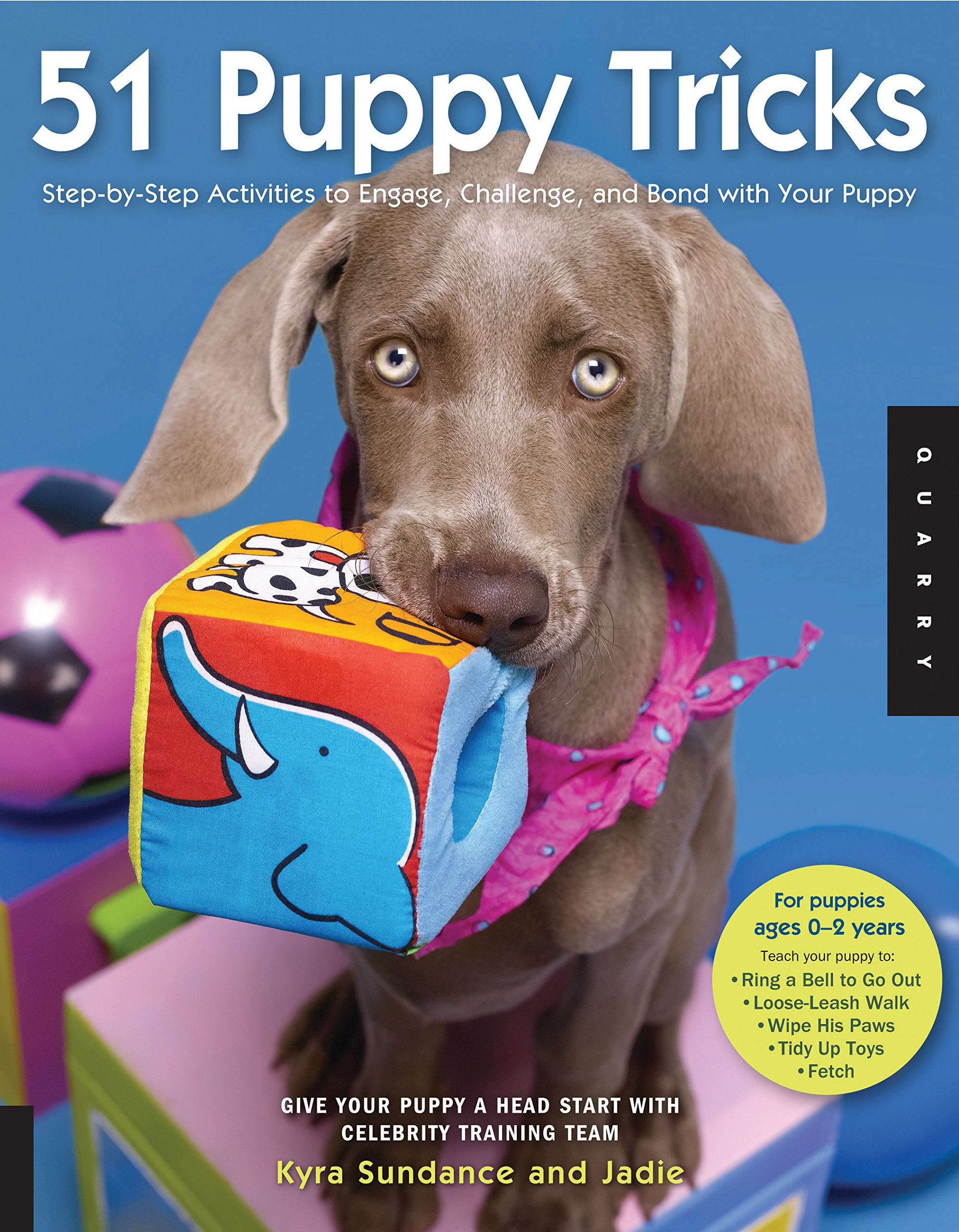 51 Puppy Tricks: Step-by-Step Activities to Engage, Challenge, and Bond with Your Puppy by Quayside Publishing