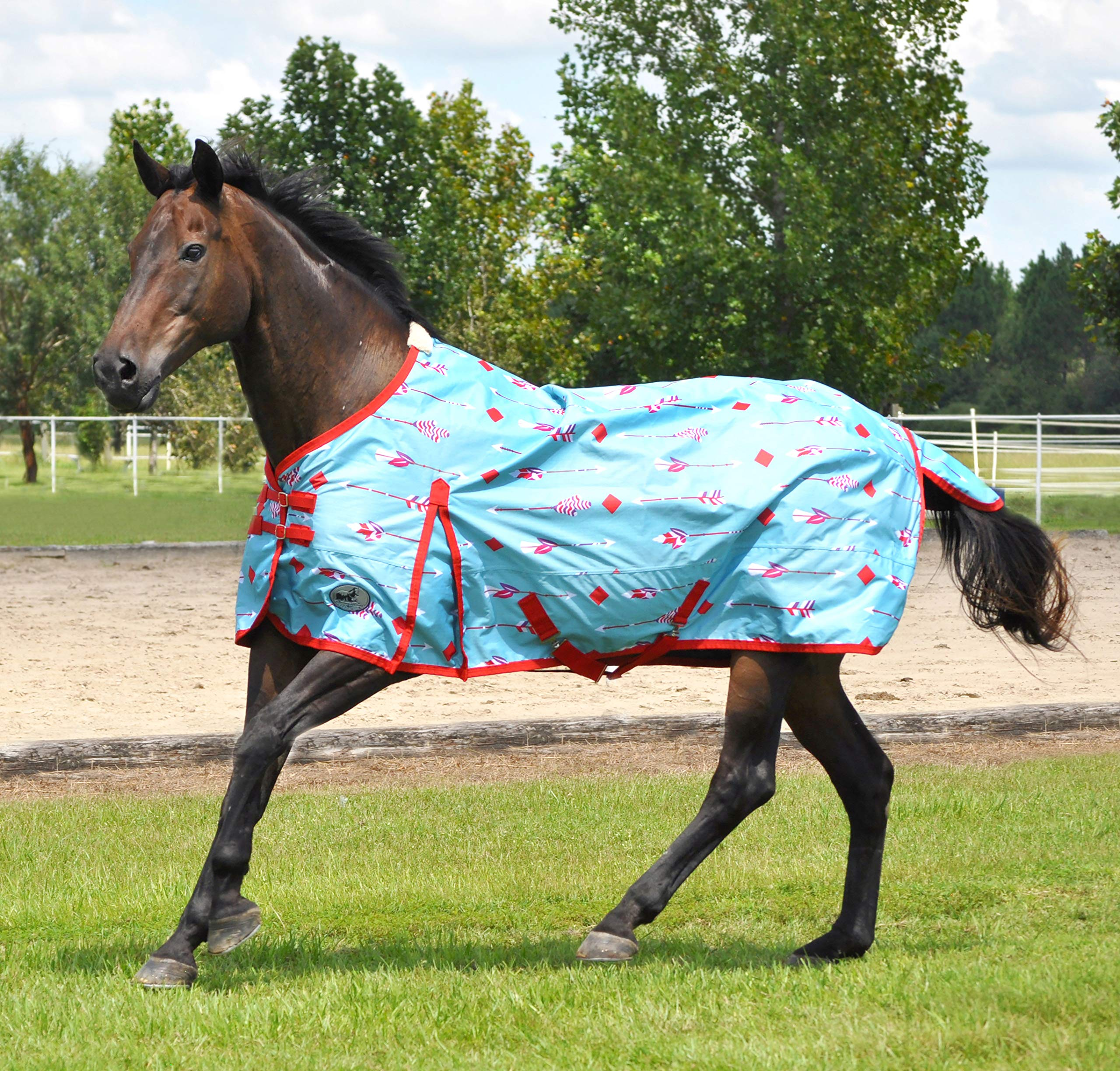 Jeffers 600D Follow Your Arrow Expression Horse Turnout Sheet by Jeffers