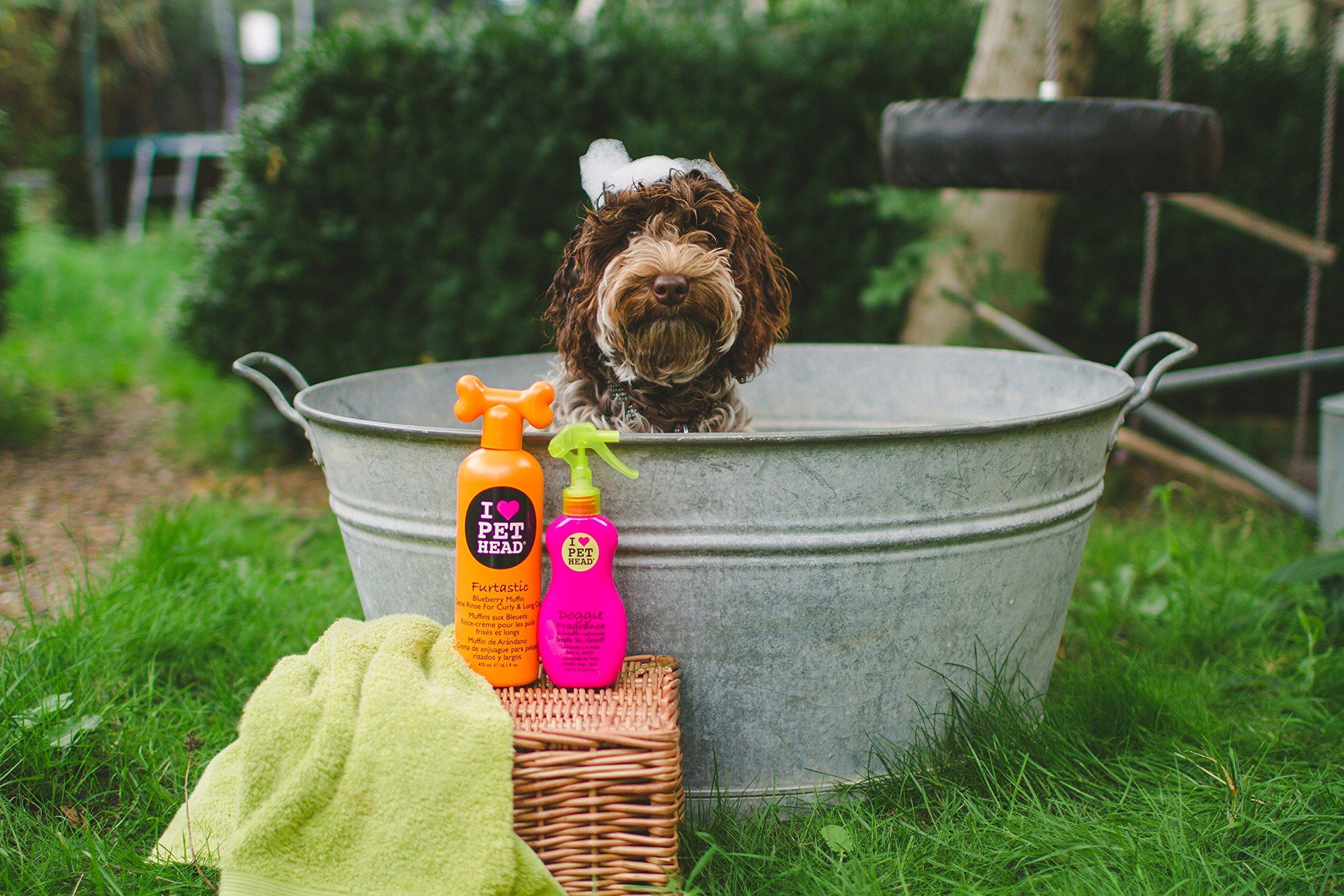 Pet Head Fur Ball Detangling Spray for Pets Strawberry Yogurt -- 15.2 fl oz by The Company of Animals (Image #5)
