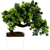 Pindia Plastic Artificial Bonsai Plant Tree Flowers with Pot (22 cm x 10 cm x 22 cm, Green)