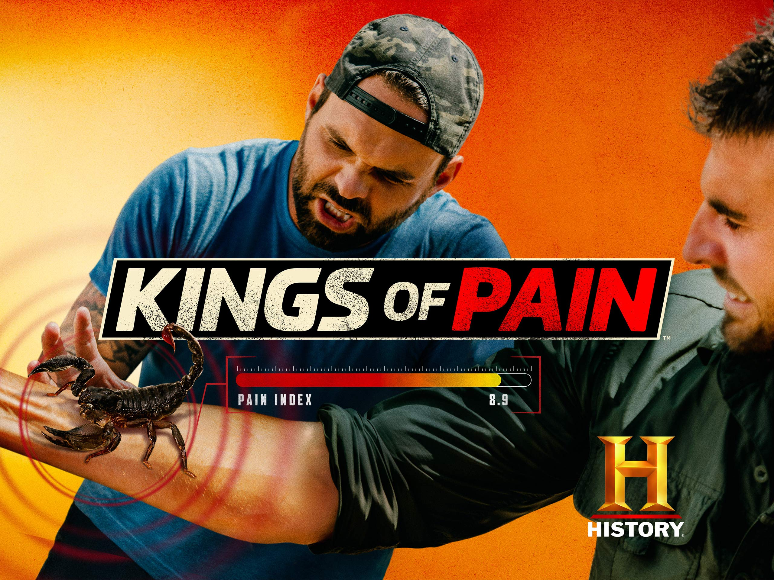 پادشاهان درد (مستند)