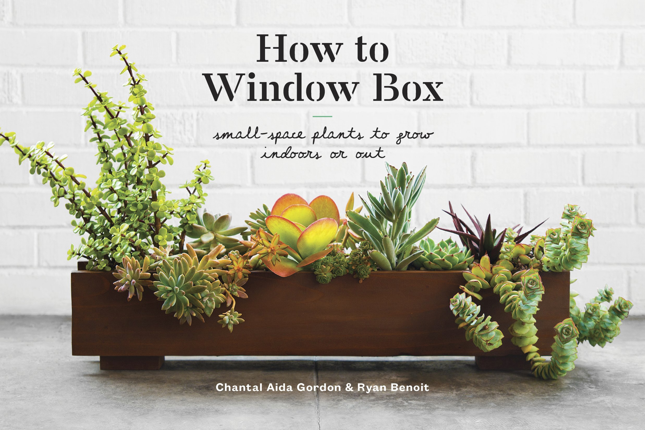 How to Window Box: Small-Space Plants to Grow Indoors or Out ...