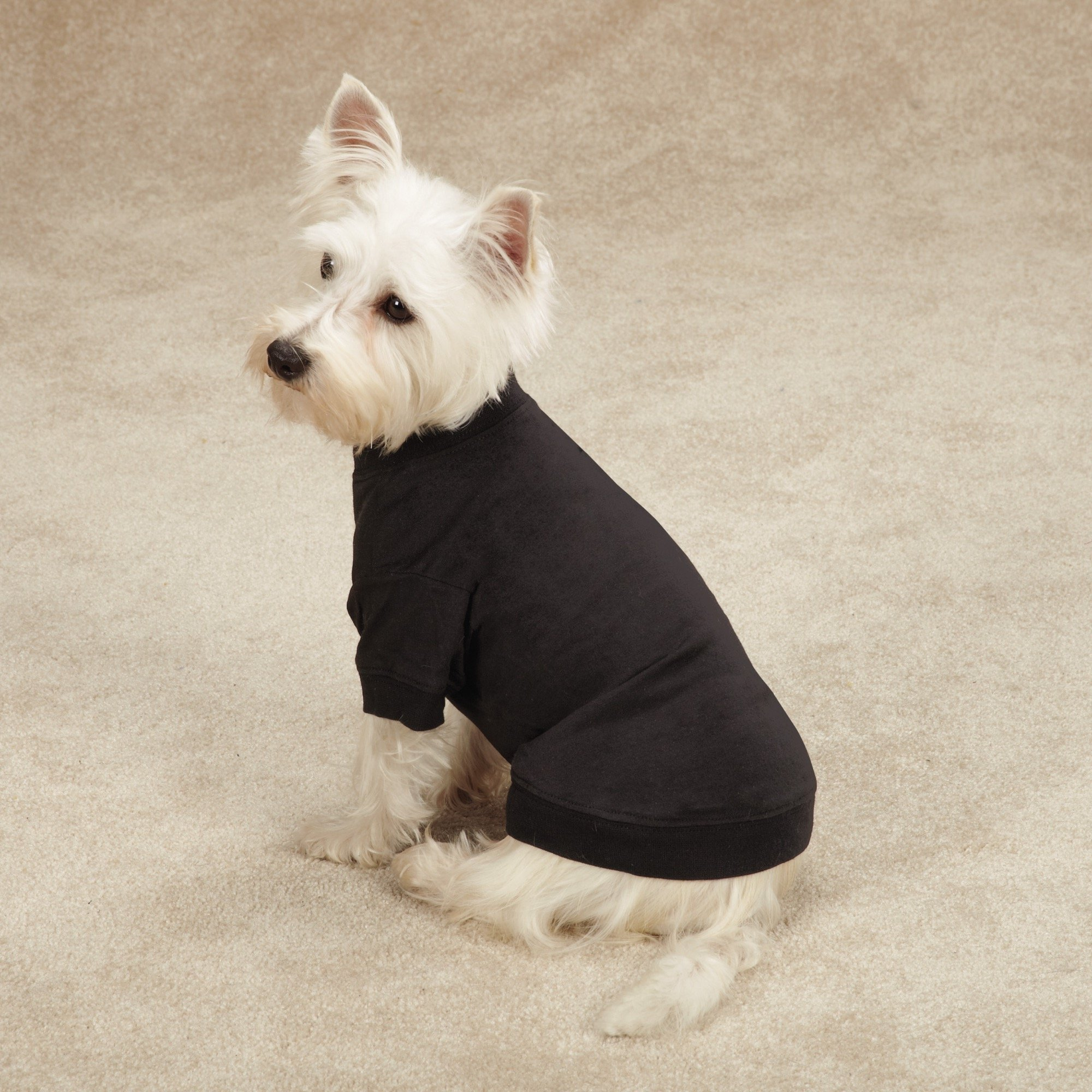 Zack & Zoey Basic Tee Shirt for Dogs, 20'' Large, Black by Zack & Zoey (Image #2)