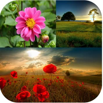 Amazon.com: Cute Nature Wallpapers: Appstore for Android