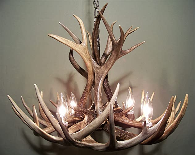 Amazon real antler chandelier whitetail mule deer combo 12 real antler chandelier whitetail mule deer combo 12 antlers 4 lights aloadofball Images