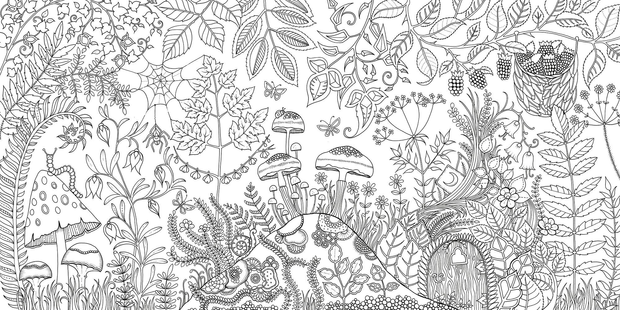 Amazon Com Enchanted Forest An Inky Quest Coloring Book