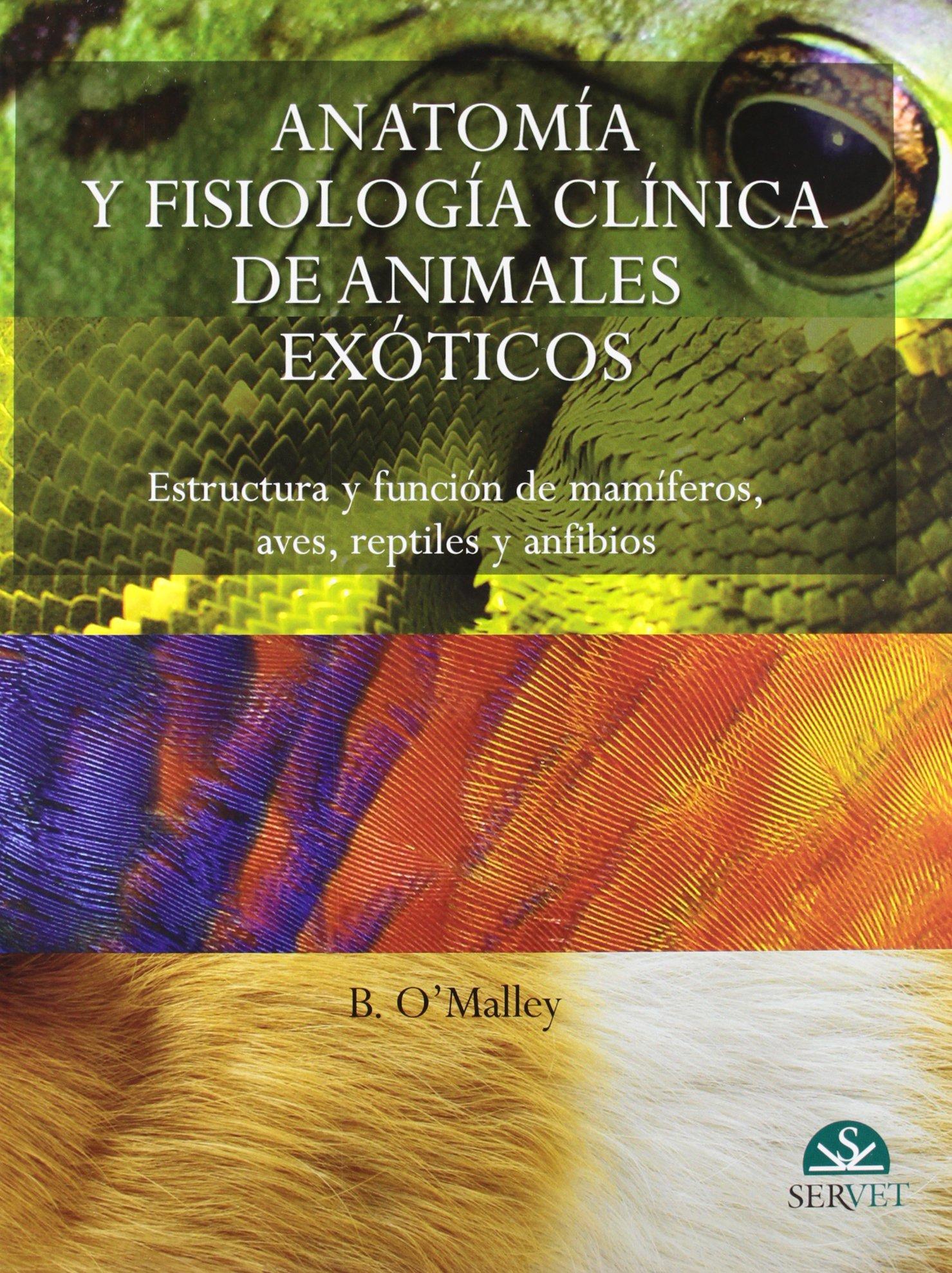 Anatomía y fisiología clínica de animales exóticos: Bairbre O\'Malley ...