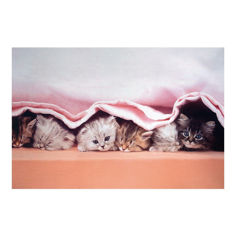 Apalis Kindertapeten Vliestapeten SugarSweet Fototapete Breit Breit Breit   Vlies Tapete Wandtapete Wandbild Foto 3D Fototapete für Schlafzimmer Wohnzimmer Küche   rosa, 94821 6c0403