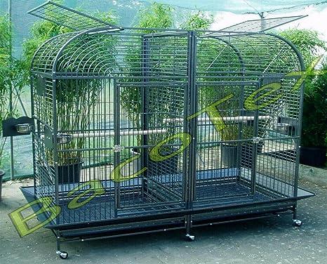Loro jaula Gigant g de 6432: Amazon.es: Productos para mascotas