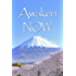 Awaken NOW: The Living Method of Spiritual Awakening