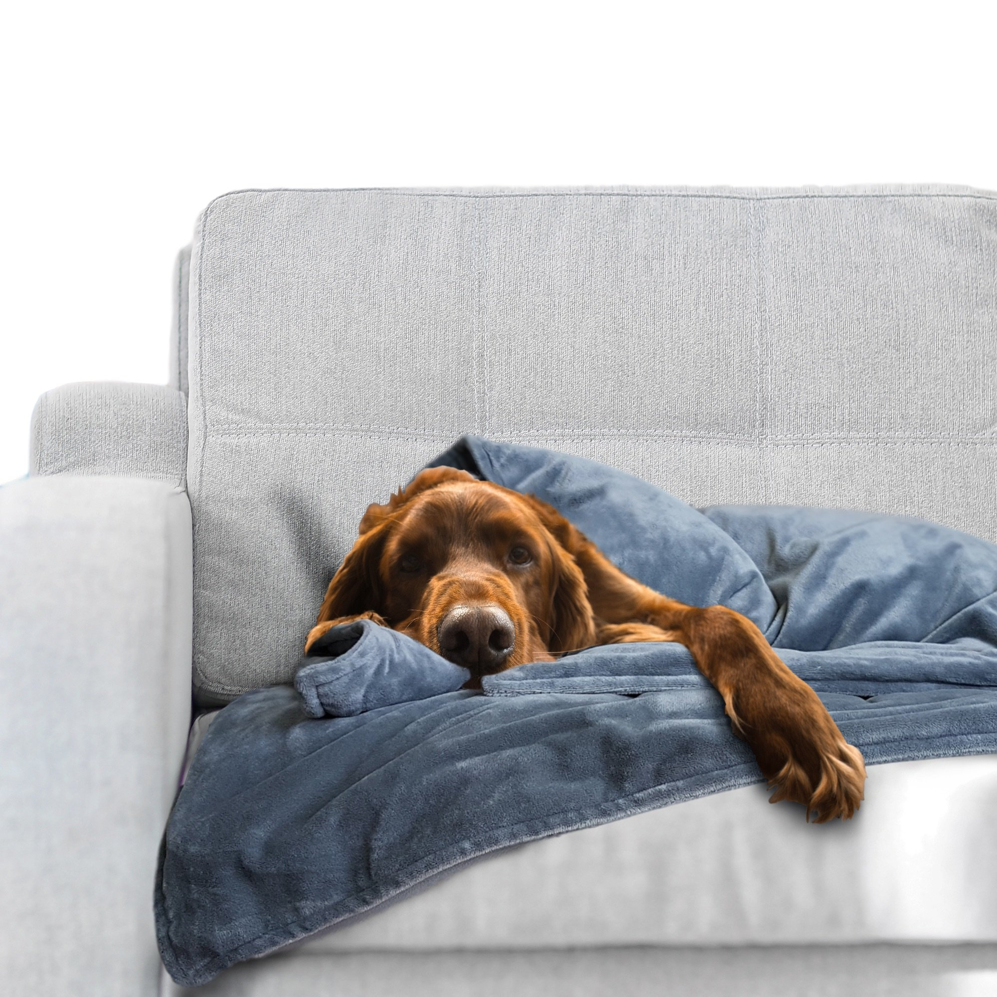 Weighted Dog Anti Anxiety Blanket (Large Dog Over 50 Lbs)