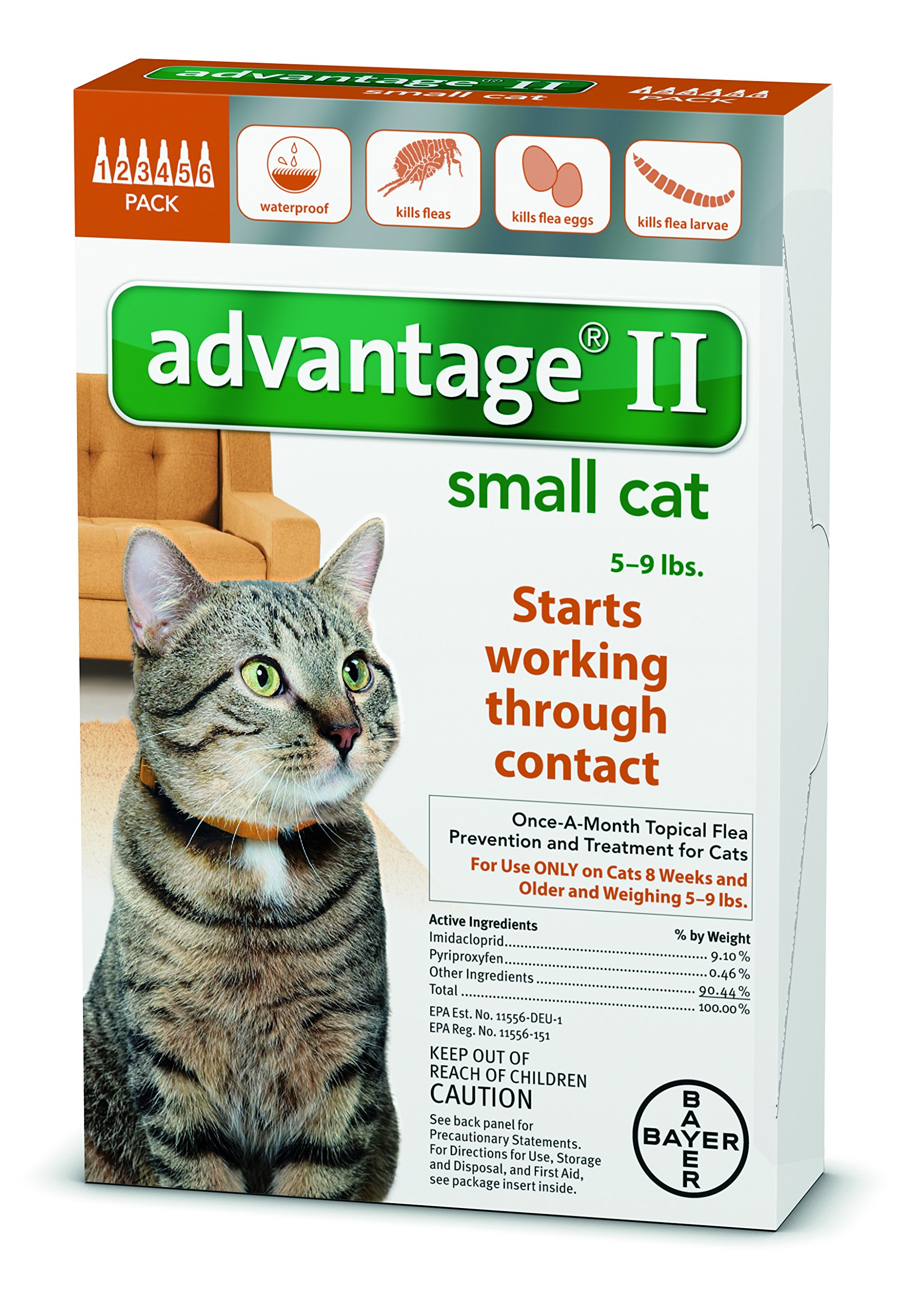 12 MONTH Advantage Orange for cats under 9lbs