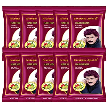 6fabd3e2123ef Buy Parampara Ayurved Burgundy Henna Online at Low Prices in India -  Amazon.in