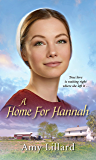 A Home for Hannah (Amish of Pontotoc Book 1)