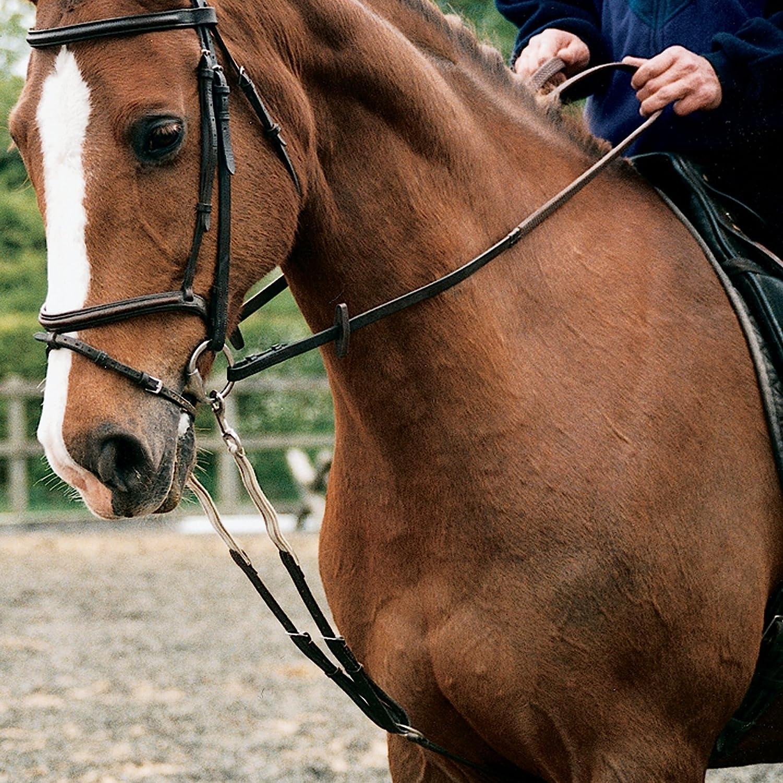 Shires Nylon Harbridge Training Aid