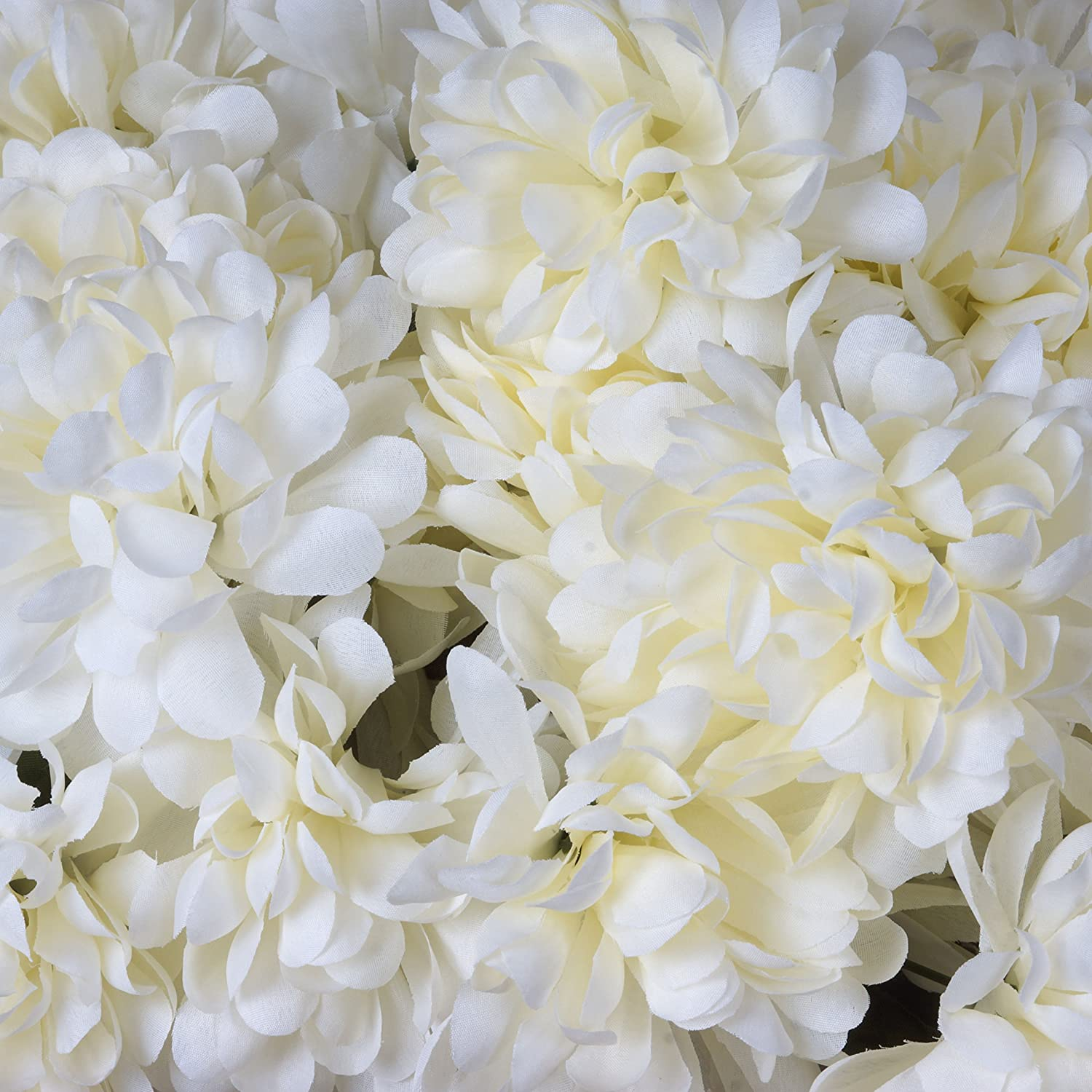 Amazon.com: BalsaCircle 56 Ivory Silk Chrysanthemums - 4 bushes ...