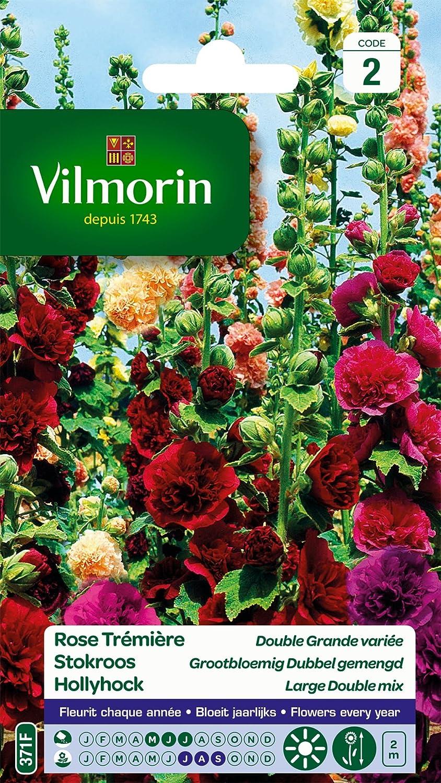 Vilmorin 5751742 Pack De Graines Rose Tremiere Double Grande Variee
