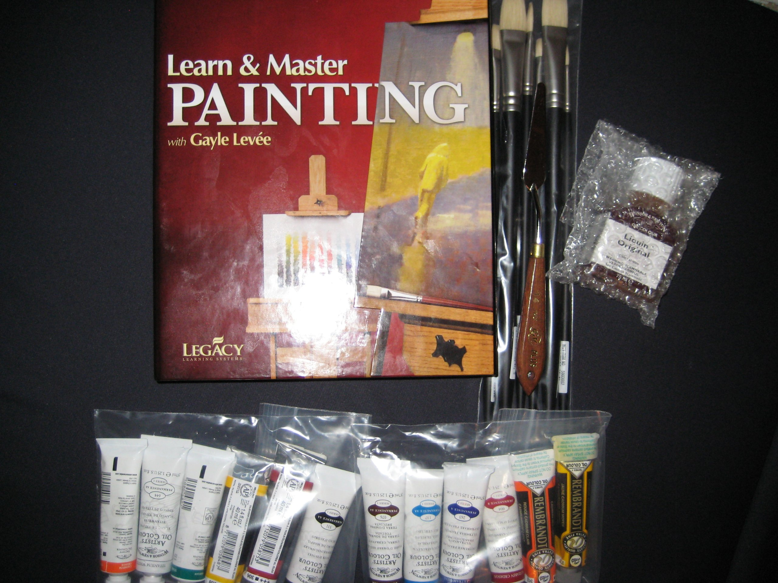 Download Learn and Master Painting with Gayle Levee, 20 DVDs, 3 Music CDs, Lesson Book, & unlimited access to Support Site from Legacy Learning pdf