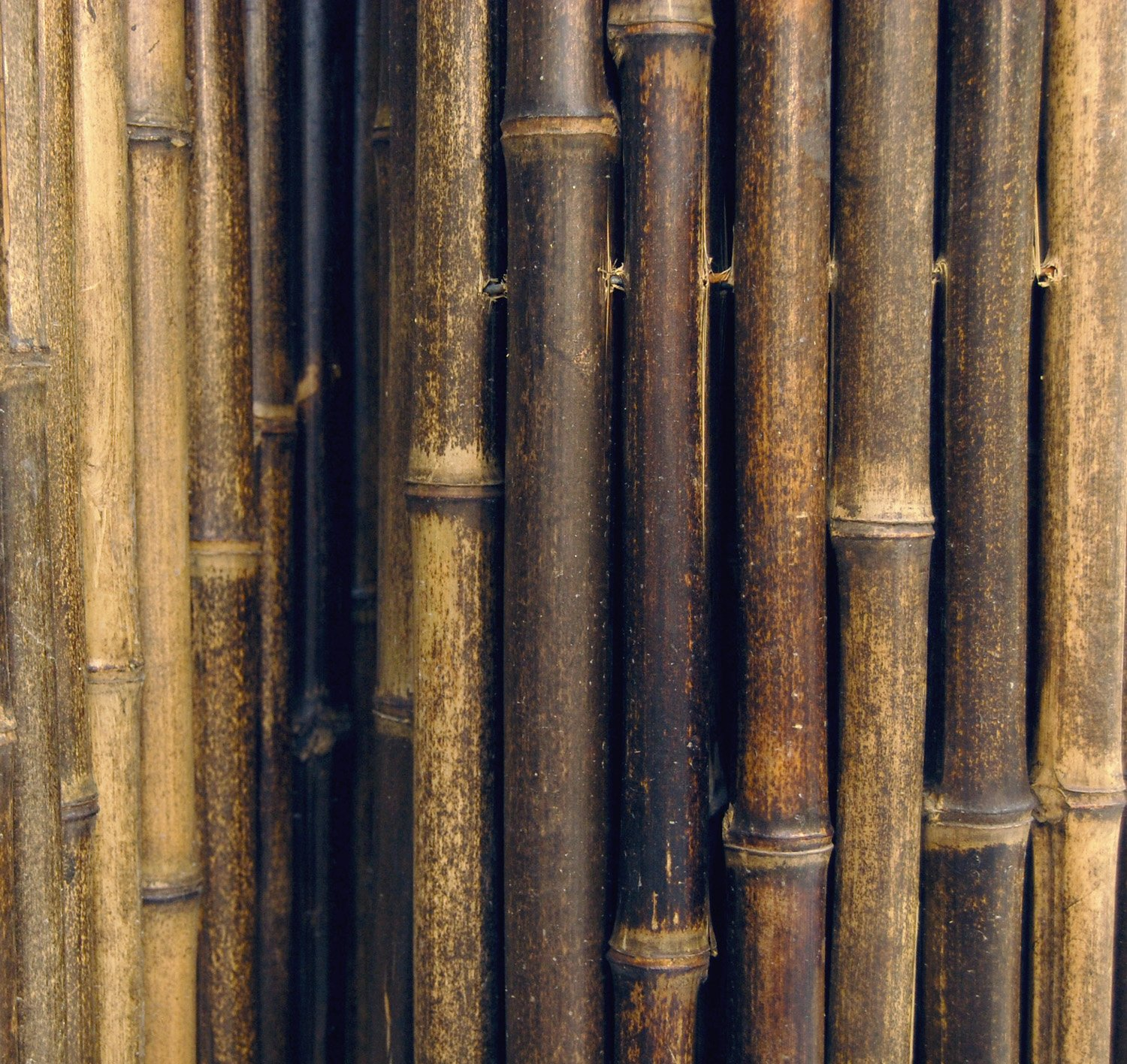 Amazon natural black rolled bamboo fencing 1 x 3 x 8 amazon natural black rolled bamboo fencing 1 x 3 x 8 outdoor decorative fences patio lawn garden baanklon Gallery