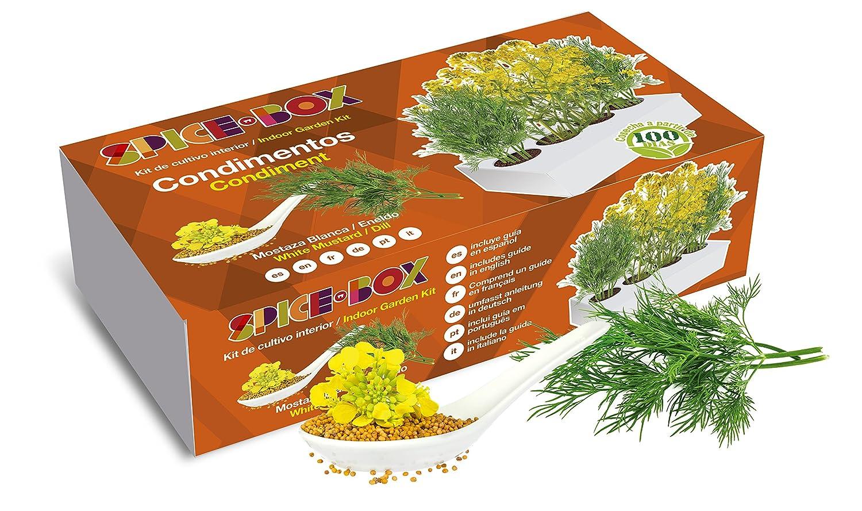 SeedBox PGSPCO Spicebox condimentos, 9x5x23 cm: Amazon.es: Jardín